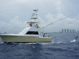 Fishing in South Florida is a common activity and an economic staple of tourism and commercial fishing . . .
